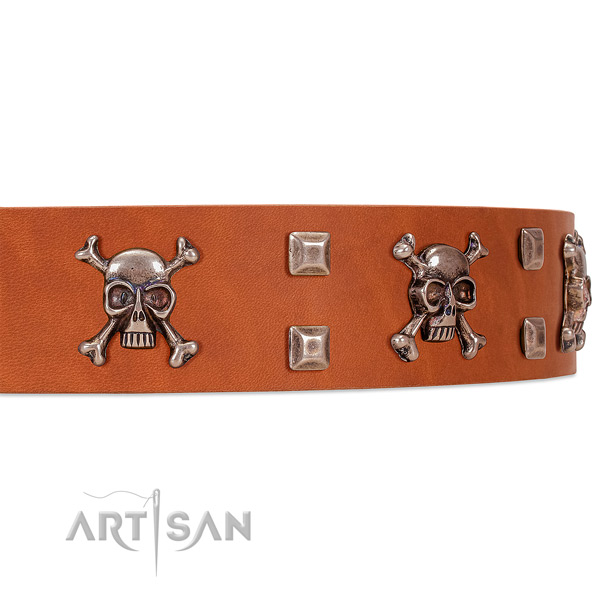 Tan leather dog collar with riveted decorations