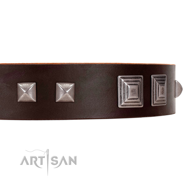 FDT Artisan brown leather dog collar with square studs