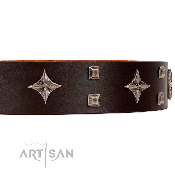 Premium quality leather dog collar with attractive stars and studs