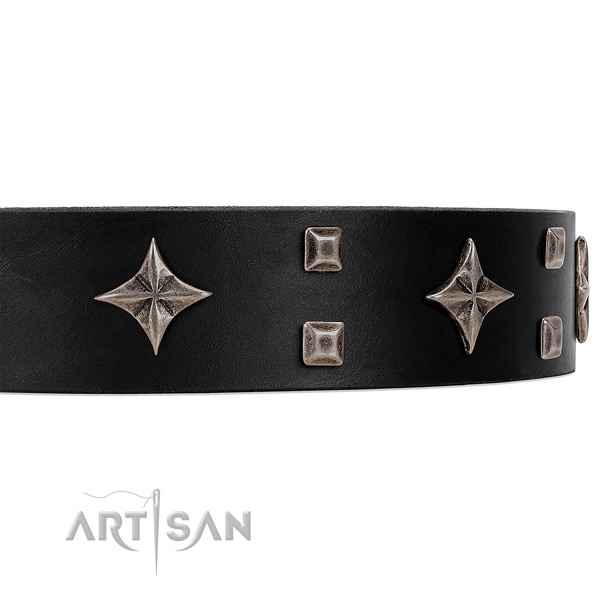 Ritzy black leather collar with attractive decorations