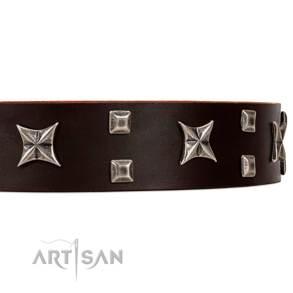 Fancy Style Brown Leather Dog Collar with Studs and