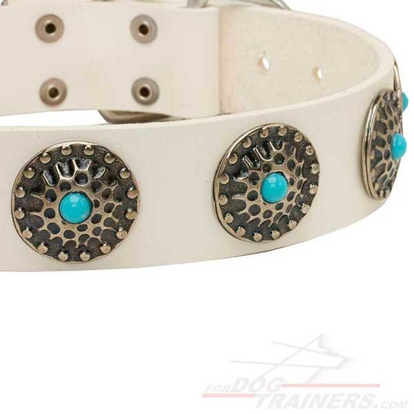 Circles with blue stones on Dog Collar