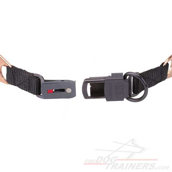 Click-Lock Buckle of Prong Canine Collar