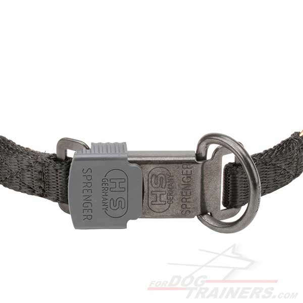 Dog Pinch Collar with safe click lock buckle