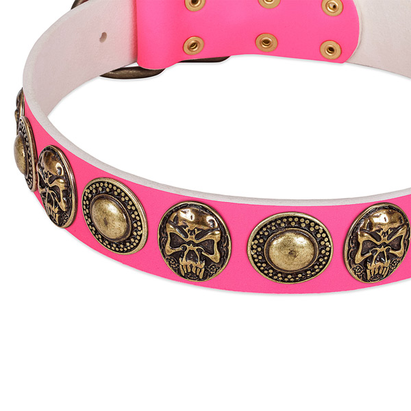 Pink dog collar with conchos and medallions