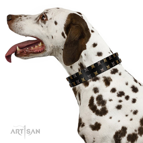 Dependable Dalmatian Artisan leather collar for pleasant