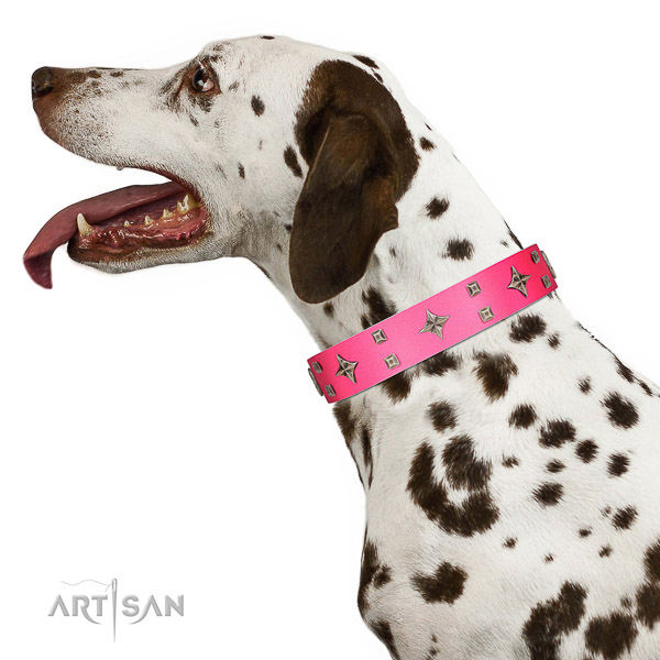 Pink leather Dalmatian collar for stylish look