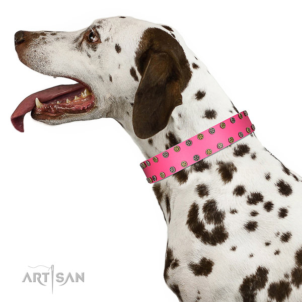 Decorated leather Dalmatian collar for comfortable walking