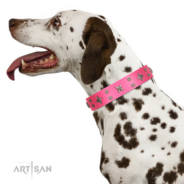Extraordinary walking pink leather Dalmatian collar with modern decorations