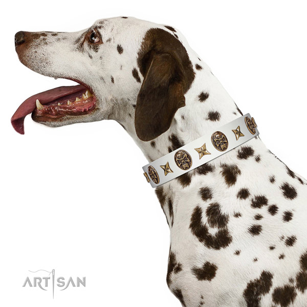 White Leather Dalmatian Collar for Perfect Look