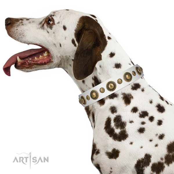 Extraordinary walking white leather Dalmatian collar with decorations