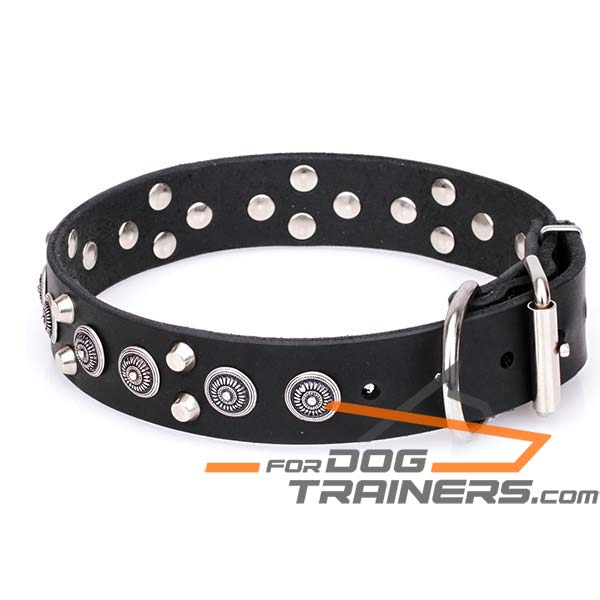 Decorated Dog Collar Made of Full Grain Genuine Leather