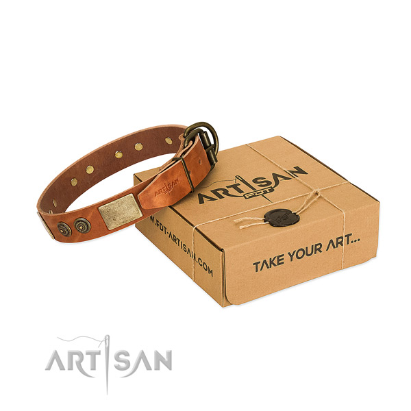 Top Notch Dog Collar of Selected Genuine Leather