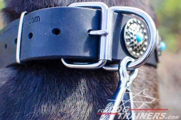 Strong rust resistant D-ring for leash attachment
