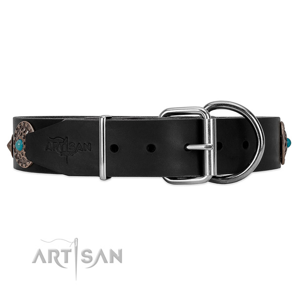Elegant dog collar of black leather with buckle and D-ring