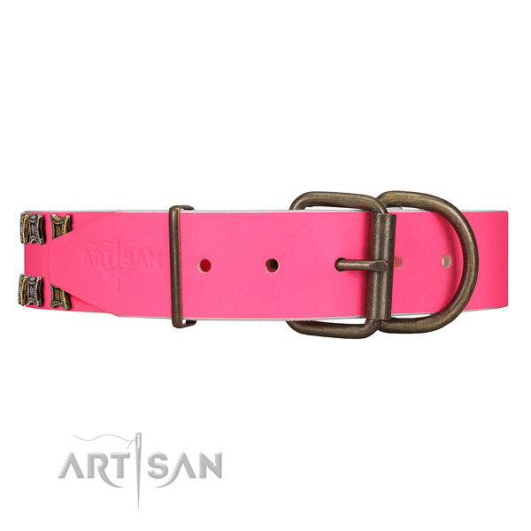 Daily Walking Leather Dog Collar with Sturdy Buckle and D-ring