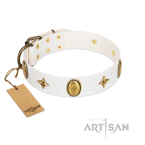 Elegant white leather dog collar with stars and ovals