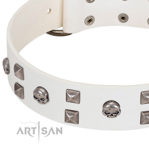 Elegant white leather dog collar with skulls and studs