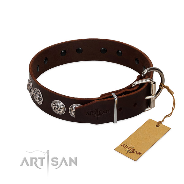 Deluxe brown leather dog collar with strong hardware