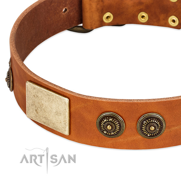 Tan Leather Dog Collar with Handset Conchos and Massive Plates