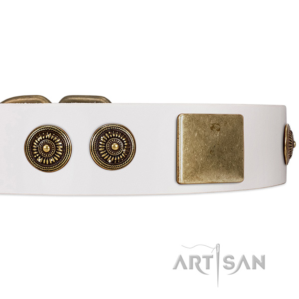 White Leather Dog Collar with Handset Conchos and Plates