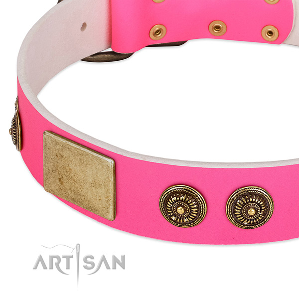 Pink Leather Dog Collar with Classy Conchos and Plates