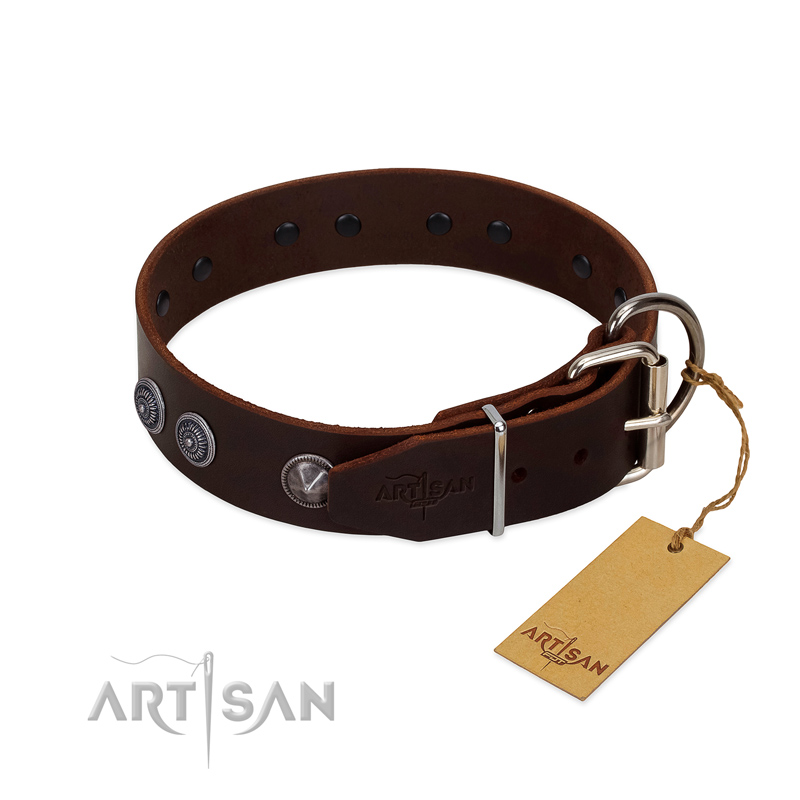 Fancy decorated leather dog collar with sturdy hardwares