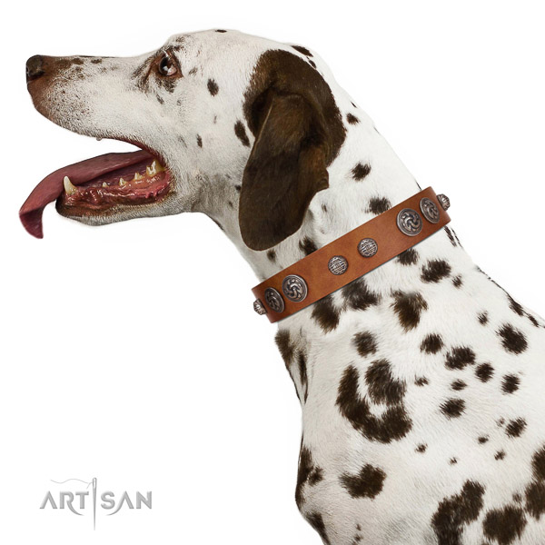 Stylish Dalmatian Collar of Soft Leather for Comfortable