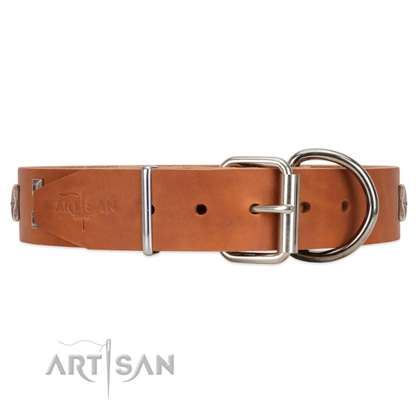 Deluxe style tan leather collar with hardware