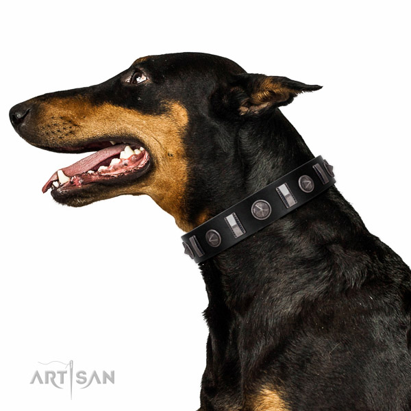 Extraordinary walking black leather Doberman collar with chic decorations