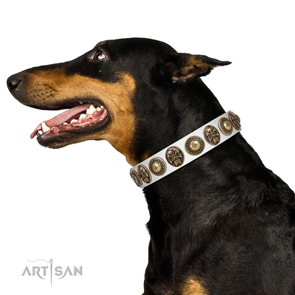 Smooth Leather Dog Collar with Stylish Adornments