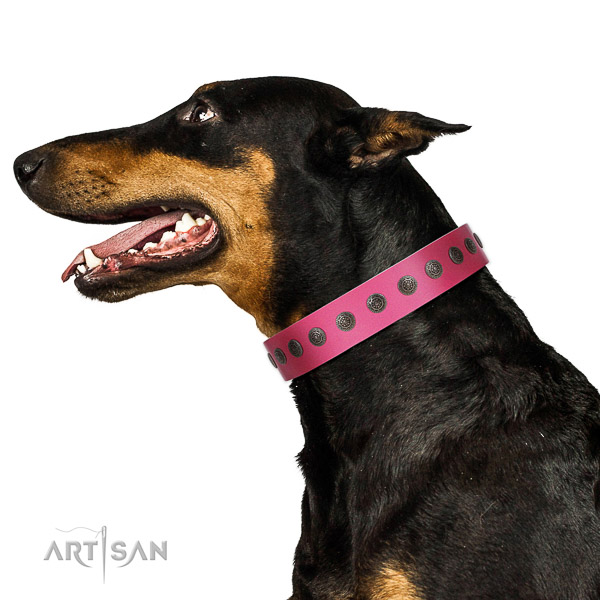 Extraordinary walking pink leather Doberman collar with