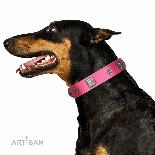 Decorated leather Doberman collar for comfortable