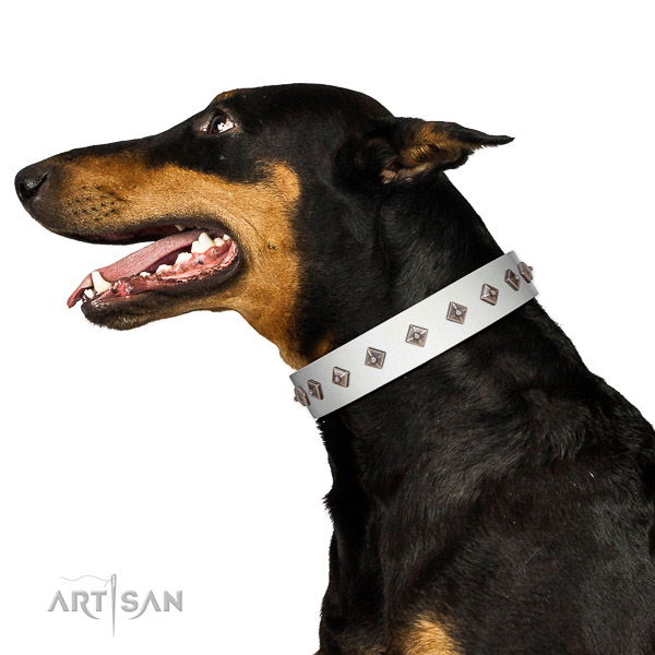 New elegant walking white leather Doberman collar with chic decorations