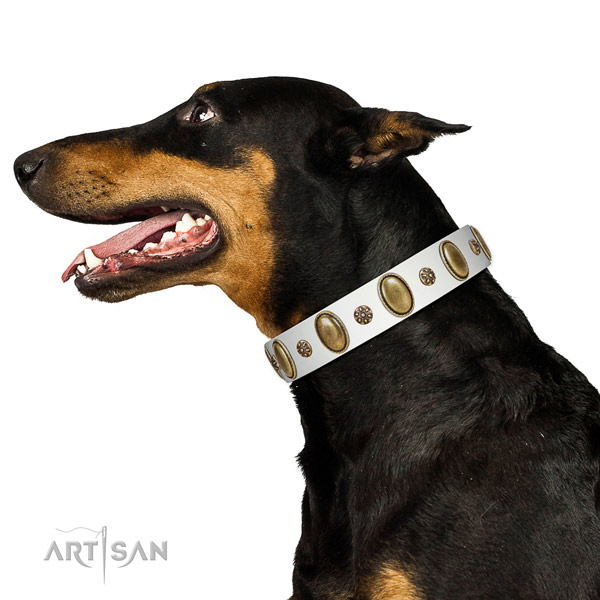 White Doberman Artisan leather collar for elegant look