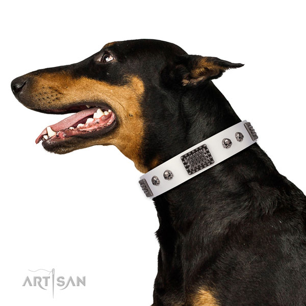 Doberman stylish walking dog collar of comfortable genuine leather