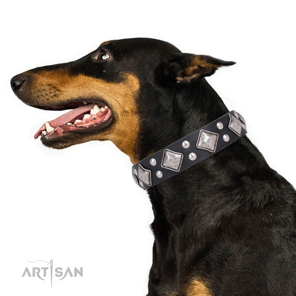 Doberman inimitable natural genuine leather dog collar with embellishments