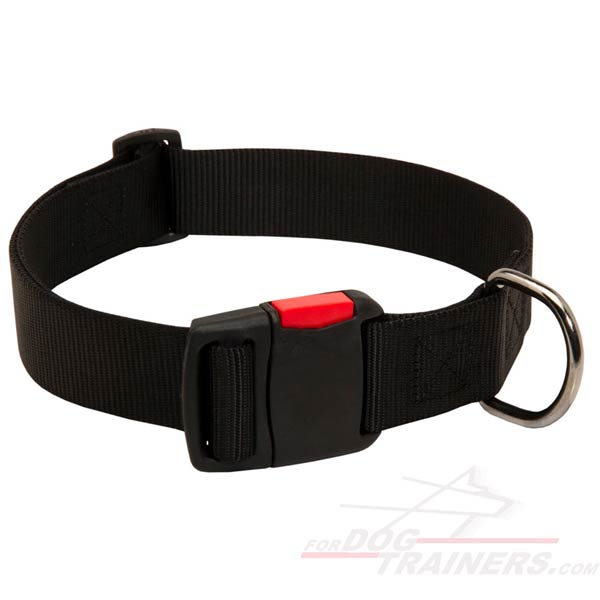 Dog Collar Nylon Adjustable Strap