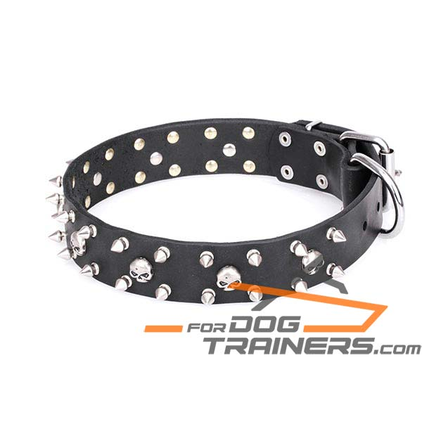 Pirate Design Leather Dog Collar with Chrome Plated Decor