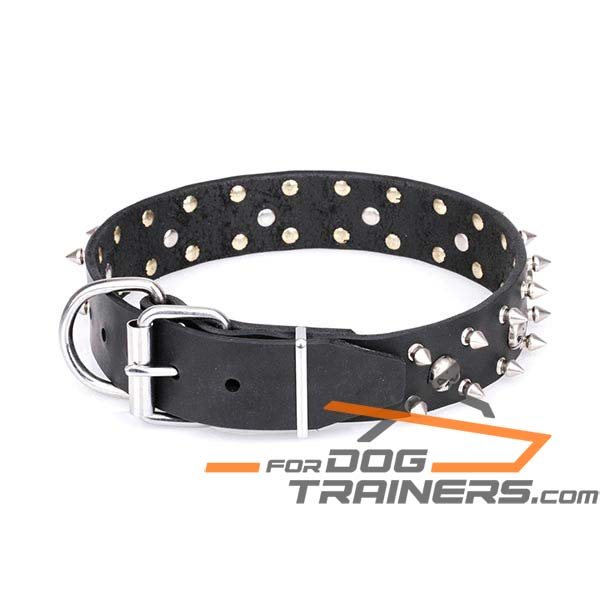 Decorated Leather Dog Collar with Super Strong D-Ring