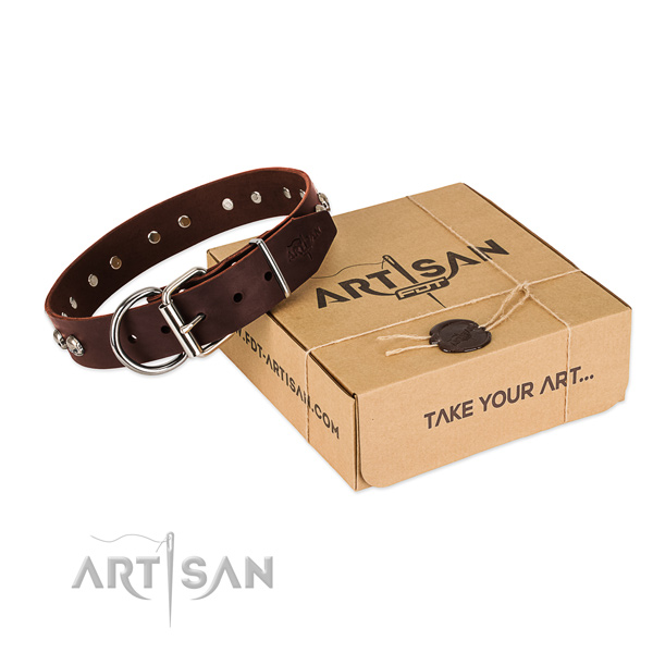 Brown Top Quality Dog Collar of Artisan Design