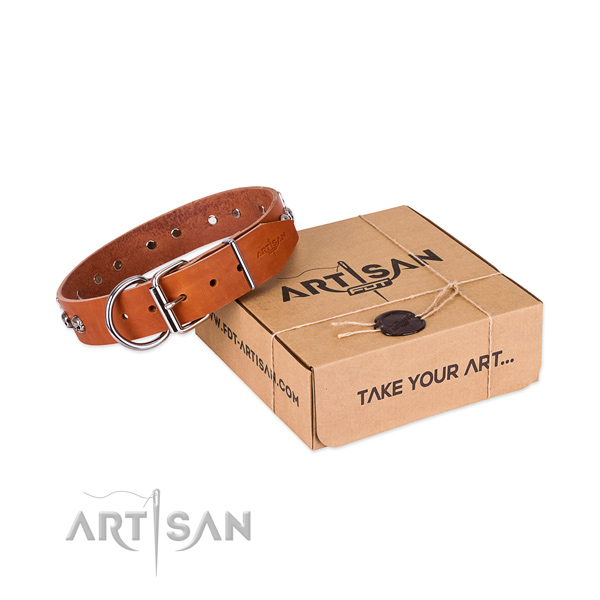 Tan Top Quality Dog Collar of Artisan Design
