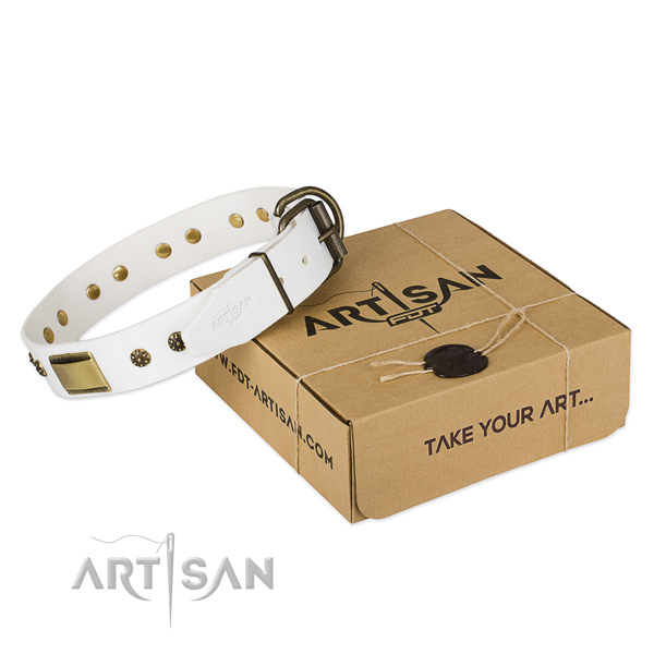 White Top Quality Dog Collar of Artisan Design