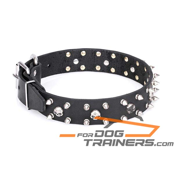 Trendy Dog Collar with Pirate Design