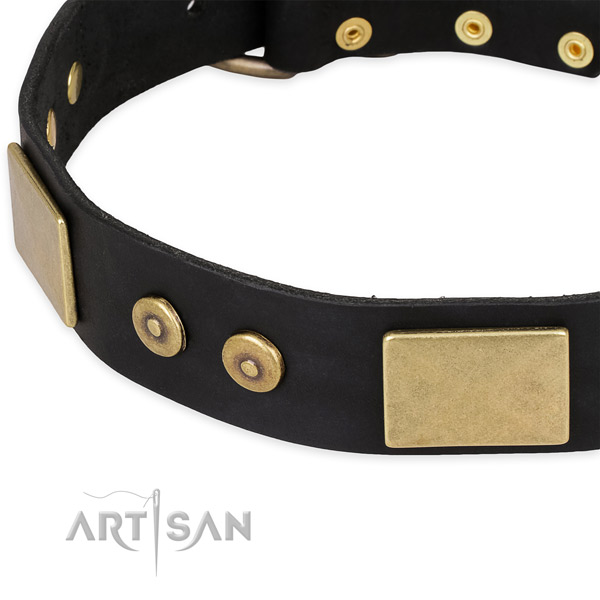 Decorative Leather Dog Collar of Black Color