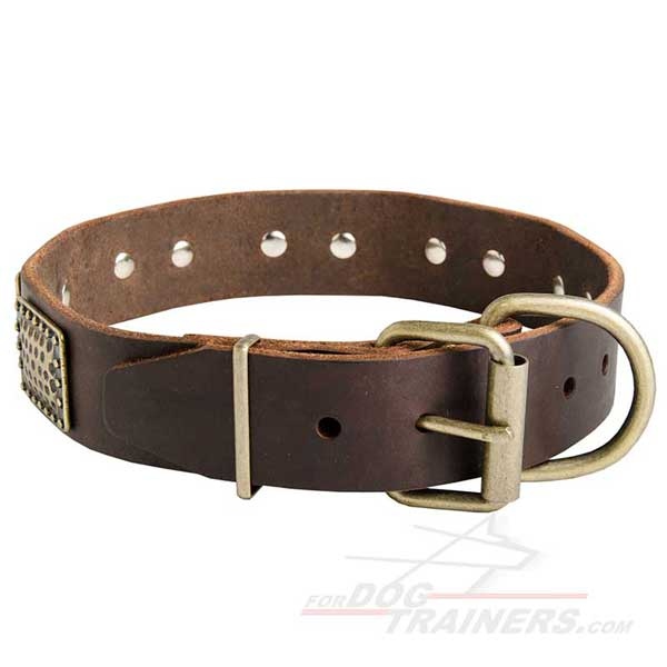 Unique Leather Cane Corso Collar with Strong Brass Fittings