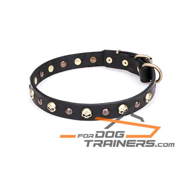 Trendy Dog Collar Decorated with Studs and Skulls