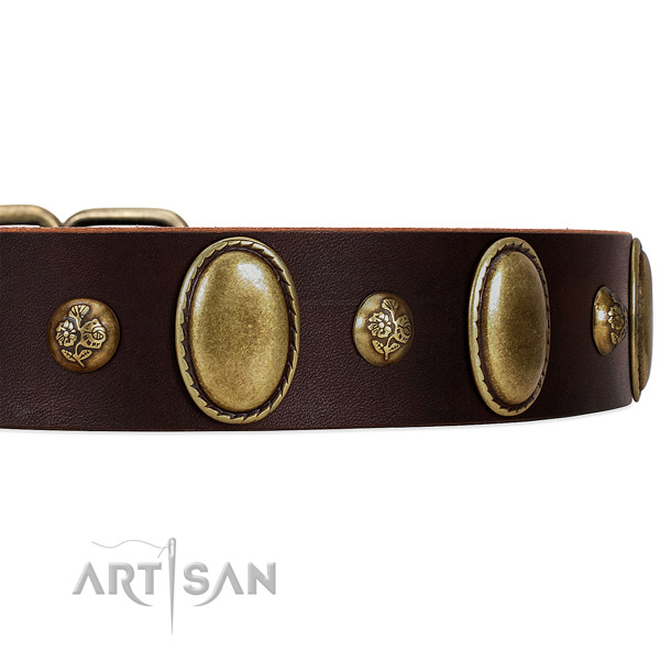 Studded Leather Dog Collar with Studs with Flowers and Oval Plates