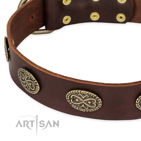Brown Leather Dog Collar with Decorative Ovals