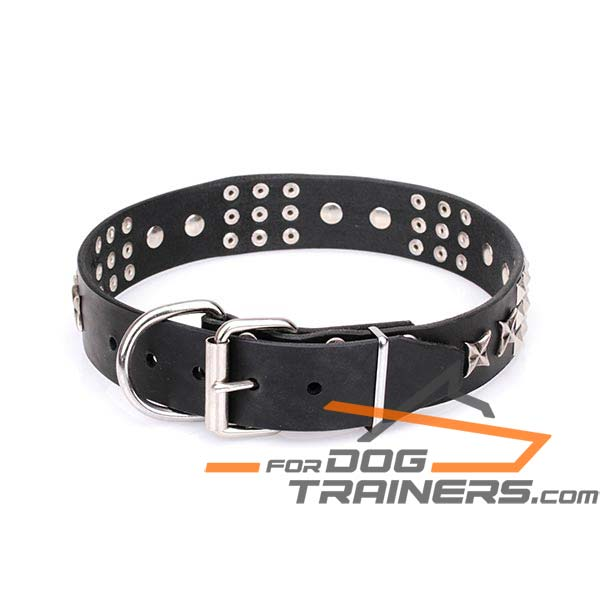 Designer Dog Collar with Durable Fittings